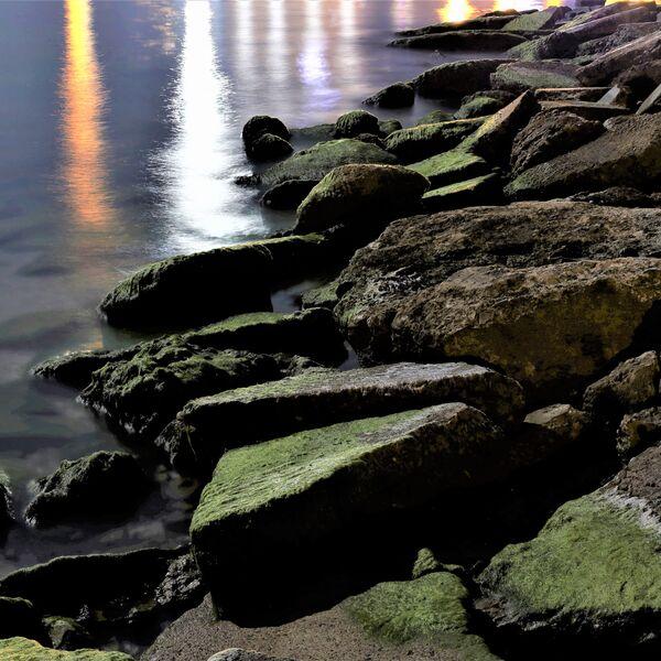 Under the Rocks Podcast Artwork Image