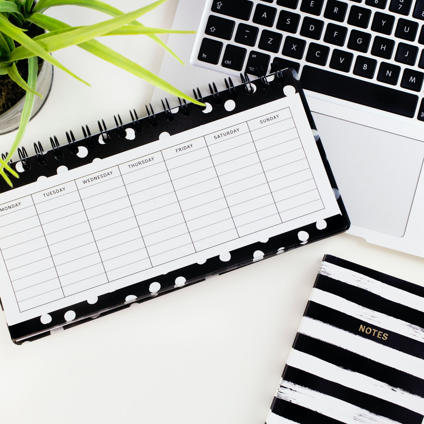 This is how I plan my Social Media content and manage to stay consistent   The Freelancer Talk #9