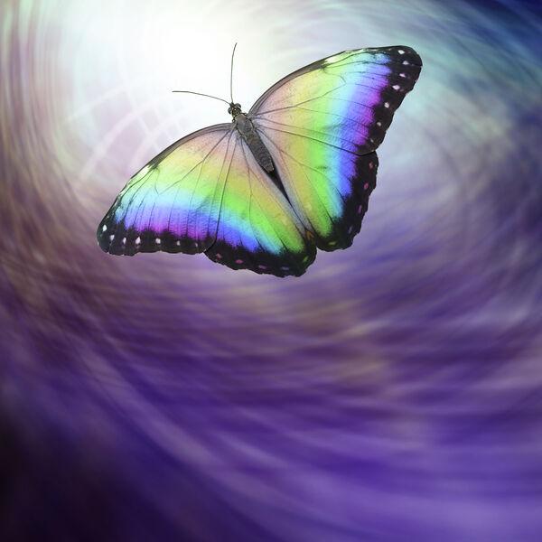 Transpersonal Journey with Irene Siegel Podcast Artwork Image
