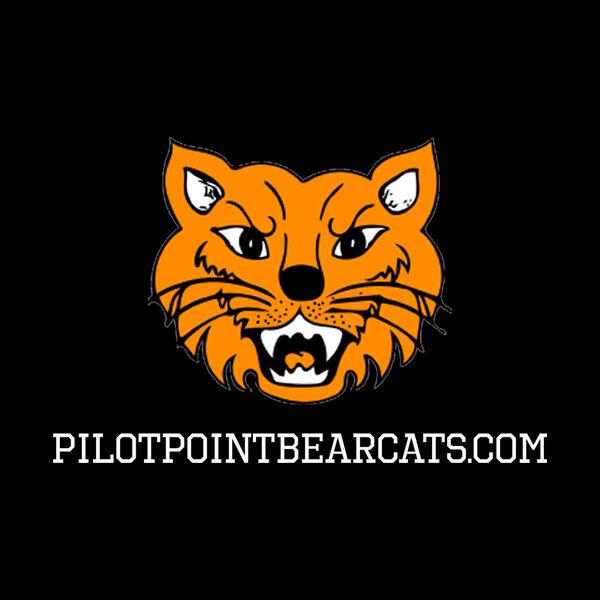 Bearcat Insider Podcast Artwork Image