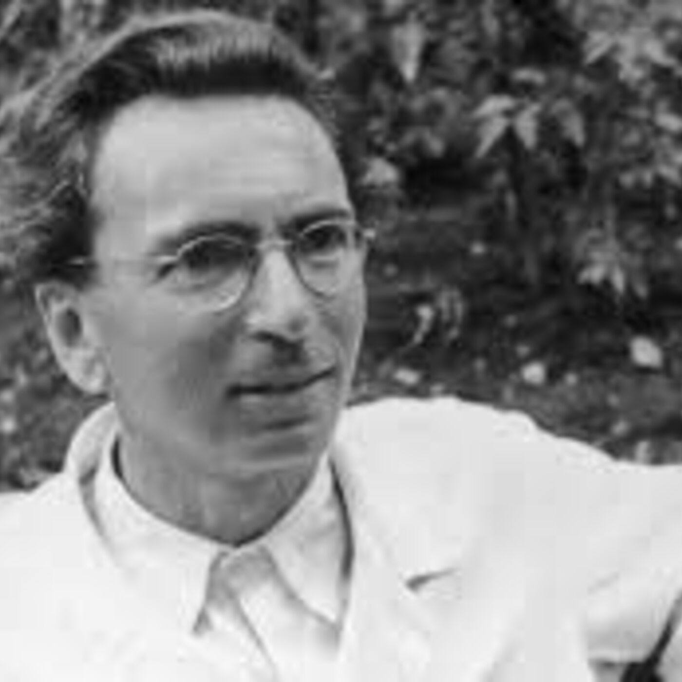 The Essence of Existence: Meditations on Viktor Frankl's Man's Search for Meaning