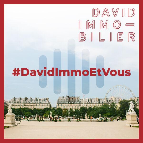 David Immobilier Podcast Artwork Image