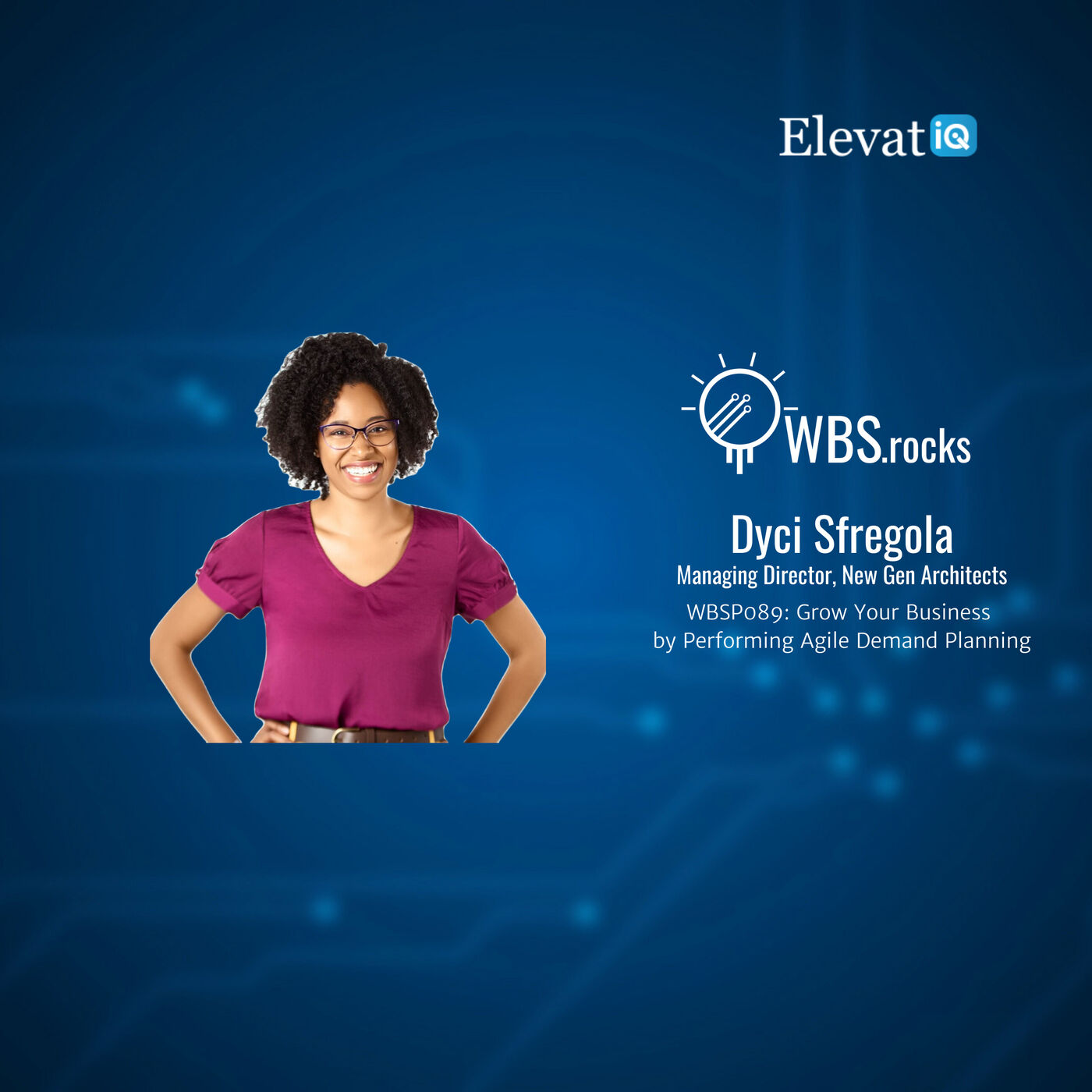 WBSP089: Grow Your Business by Performing Agile Demand Planning w/ Dyci Sfregola