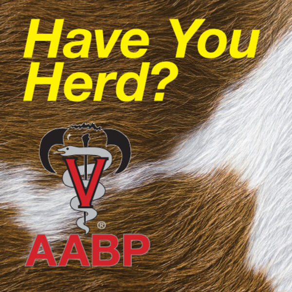 Have You Herd? AABP PodCasts Podcast Artwork Image