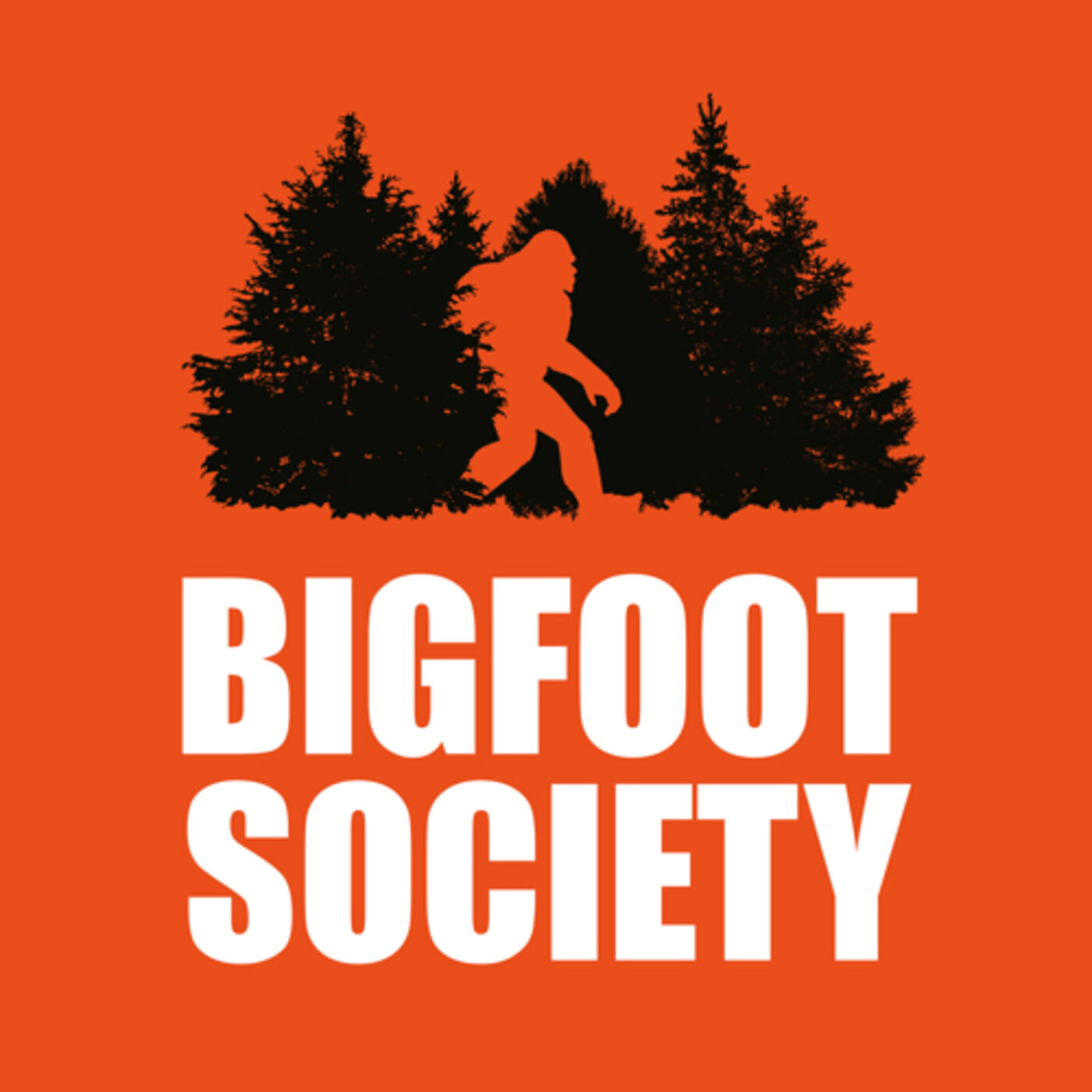 Jeremiah from Bigfoot Society interview