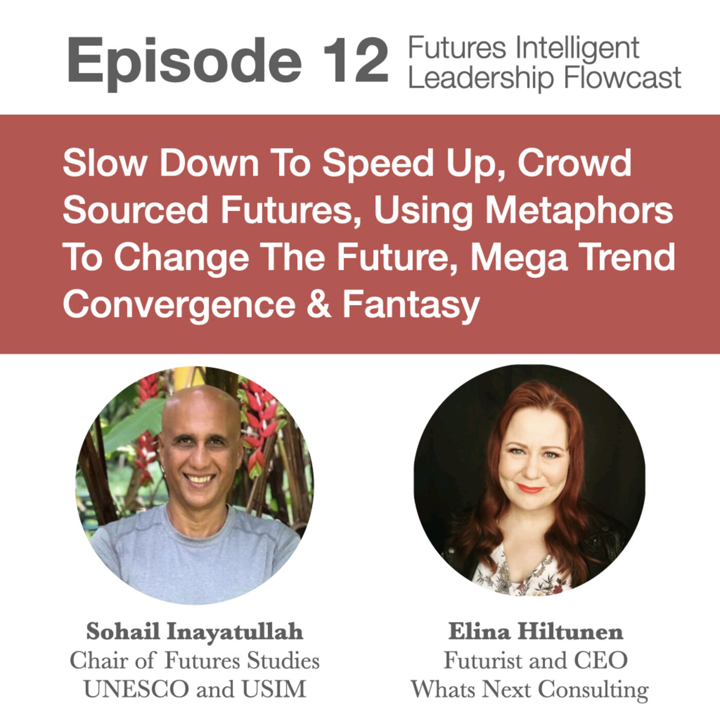 Episode 12: Slow Down To Speed Up, Crowd Sourced Futures, Using Metaphors To Change The Future, Mega Trend Convergence & Fantasy