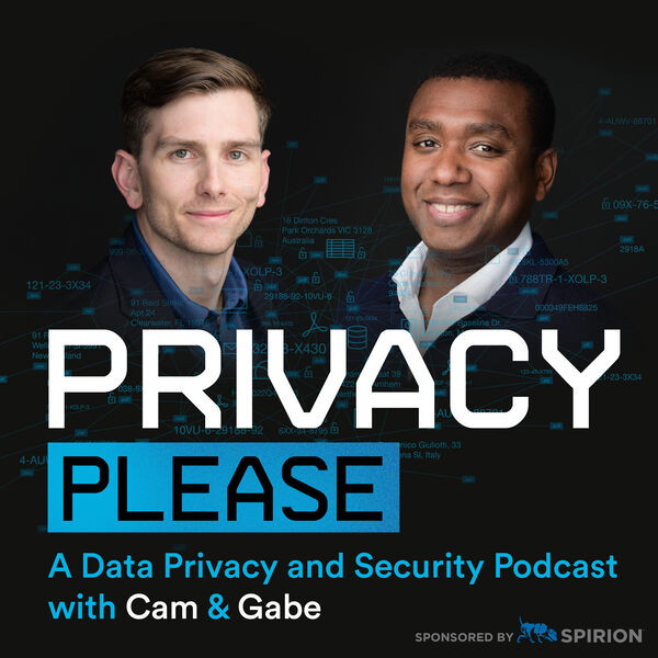 Privacy Please Podcast Artwork Image