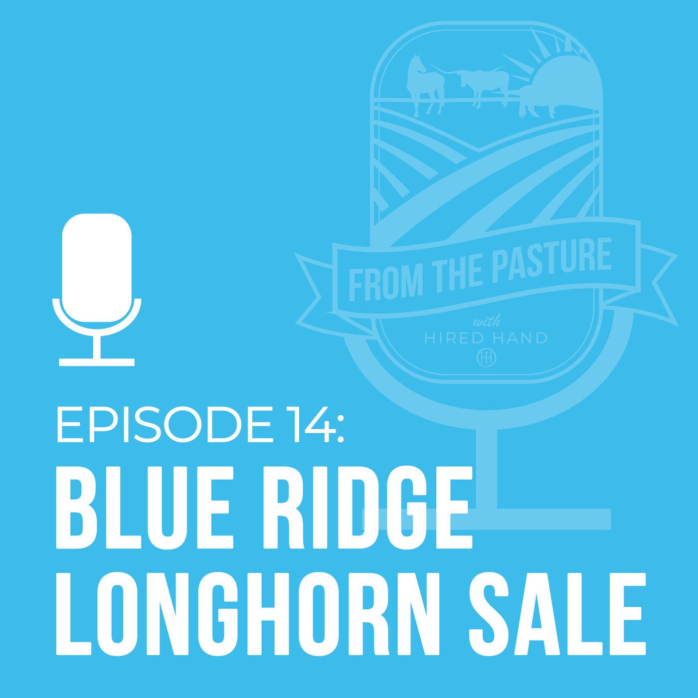 Blue Ridge Longhorns Online Only Sale