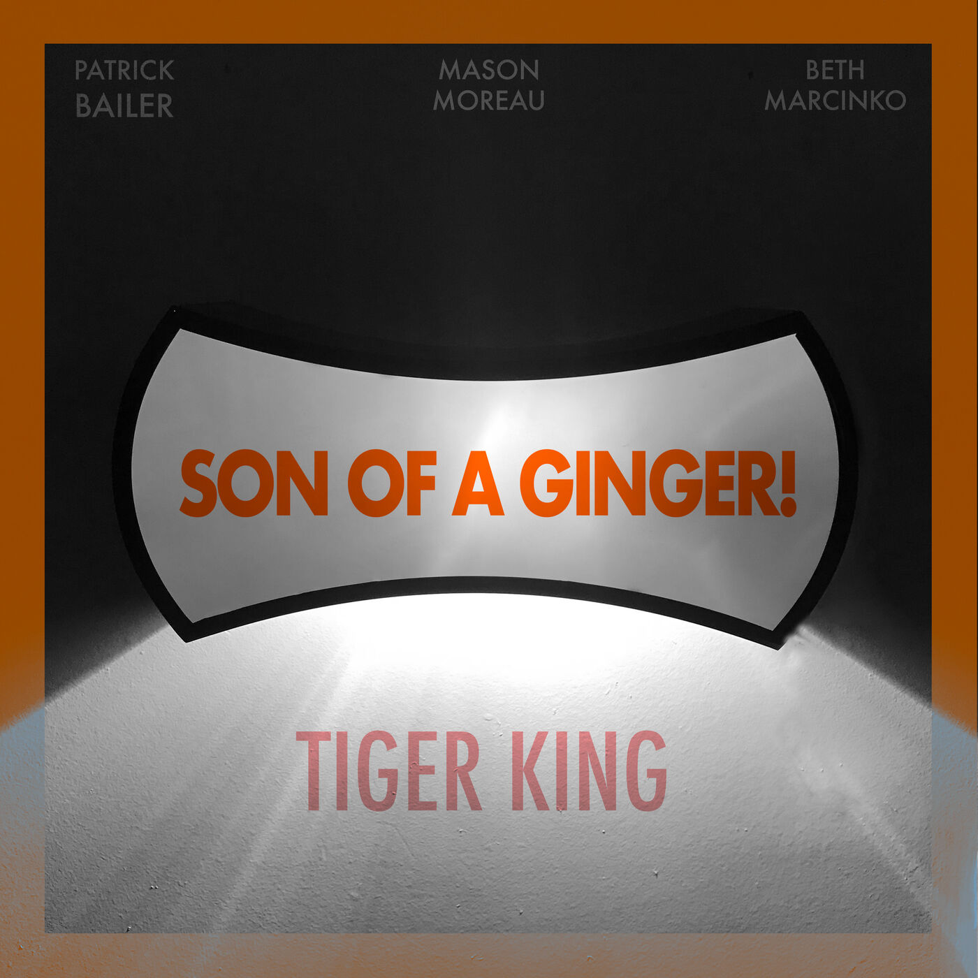 Tiger King (Dir. by Rebecca Chaiklin and Eric Goode)