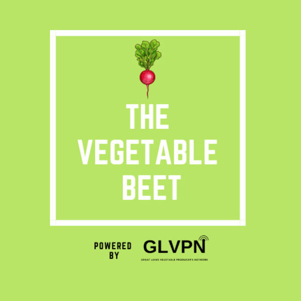 The Vegetable Beet Podcast Artwork Image