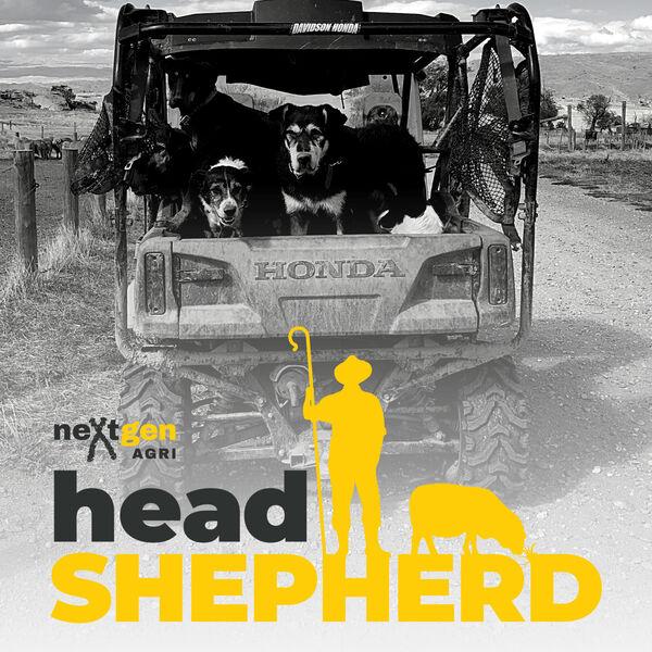 Head Shepherd Podcast Artwork Image
