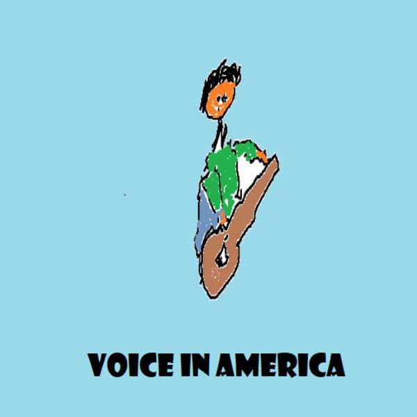 Voice in America Podcast Artwork Image