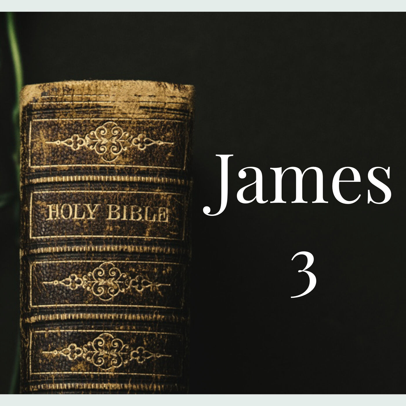 The Book of James: Week 3