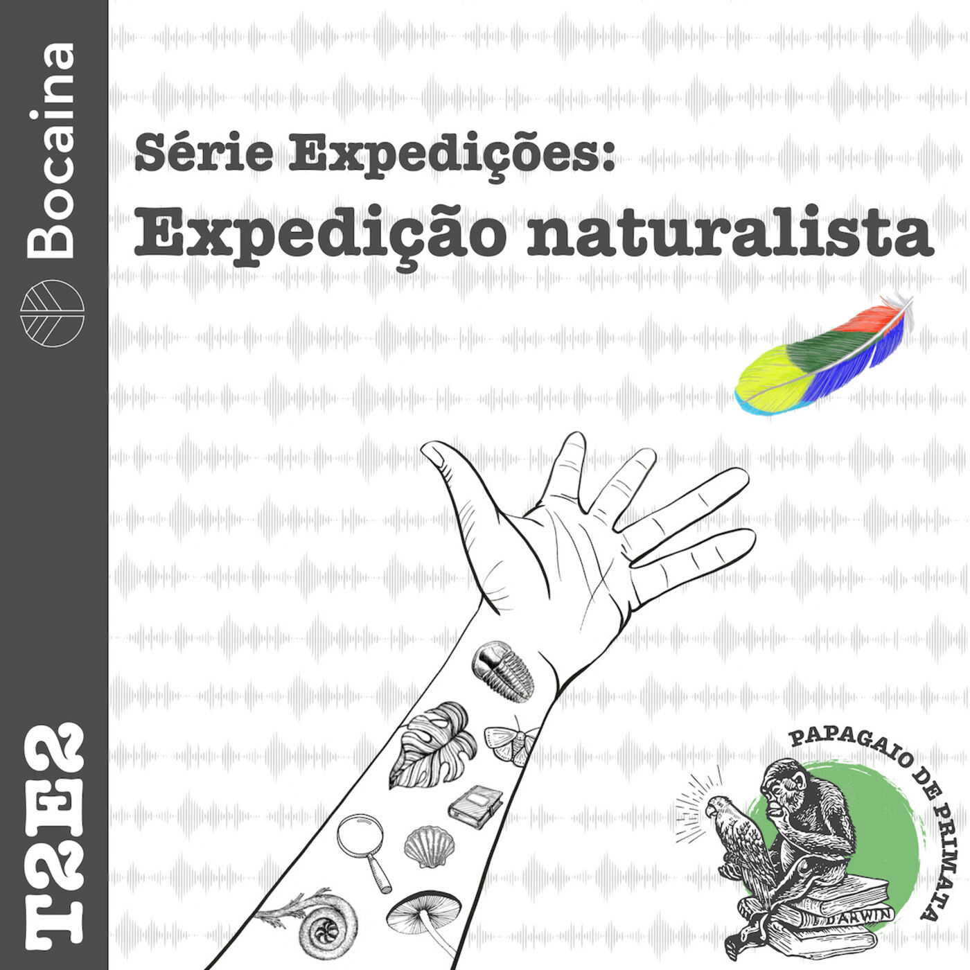 #12 - T2E2 - Série Expedições: Expedição Naturalista