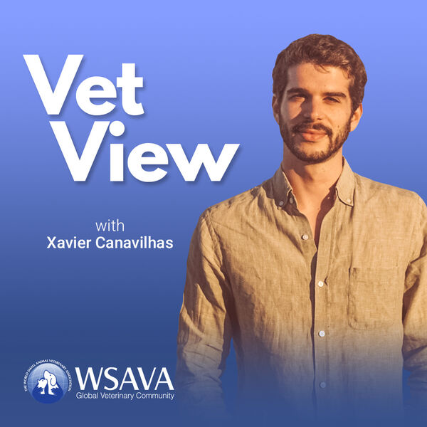 VetView - a podcast by the WSAVA Podcast Artwork Image