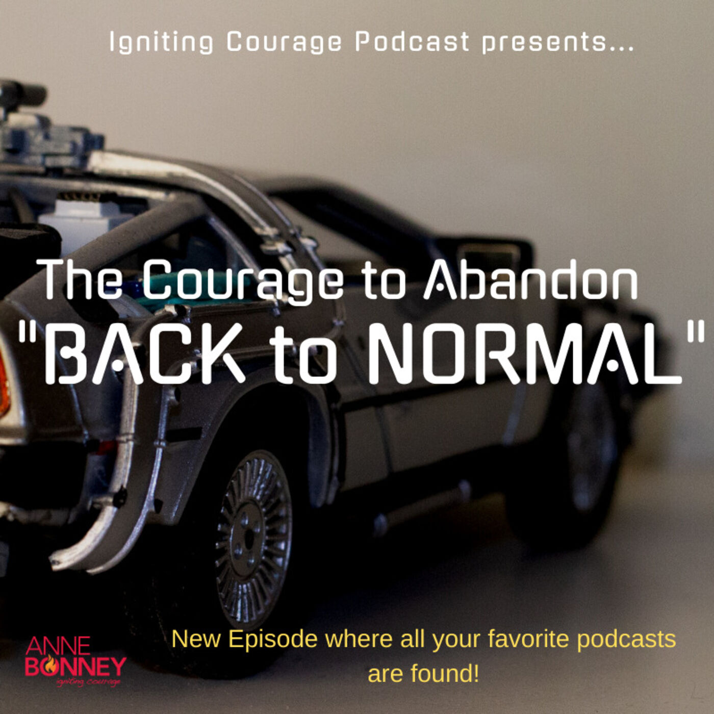 "IGNITING COURAGE Podcast Episode 90: The Courage to Abandon ""Back"""