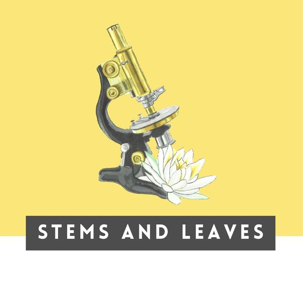 STEMS and Leaves Podcast Artwork Image