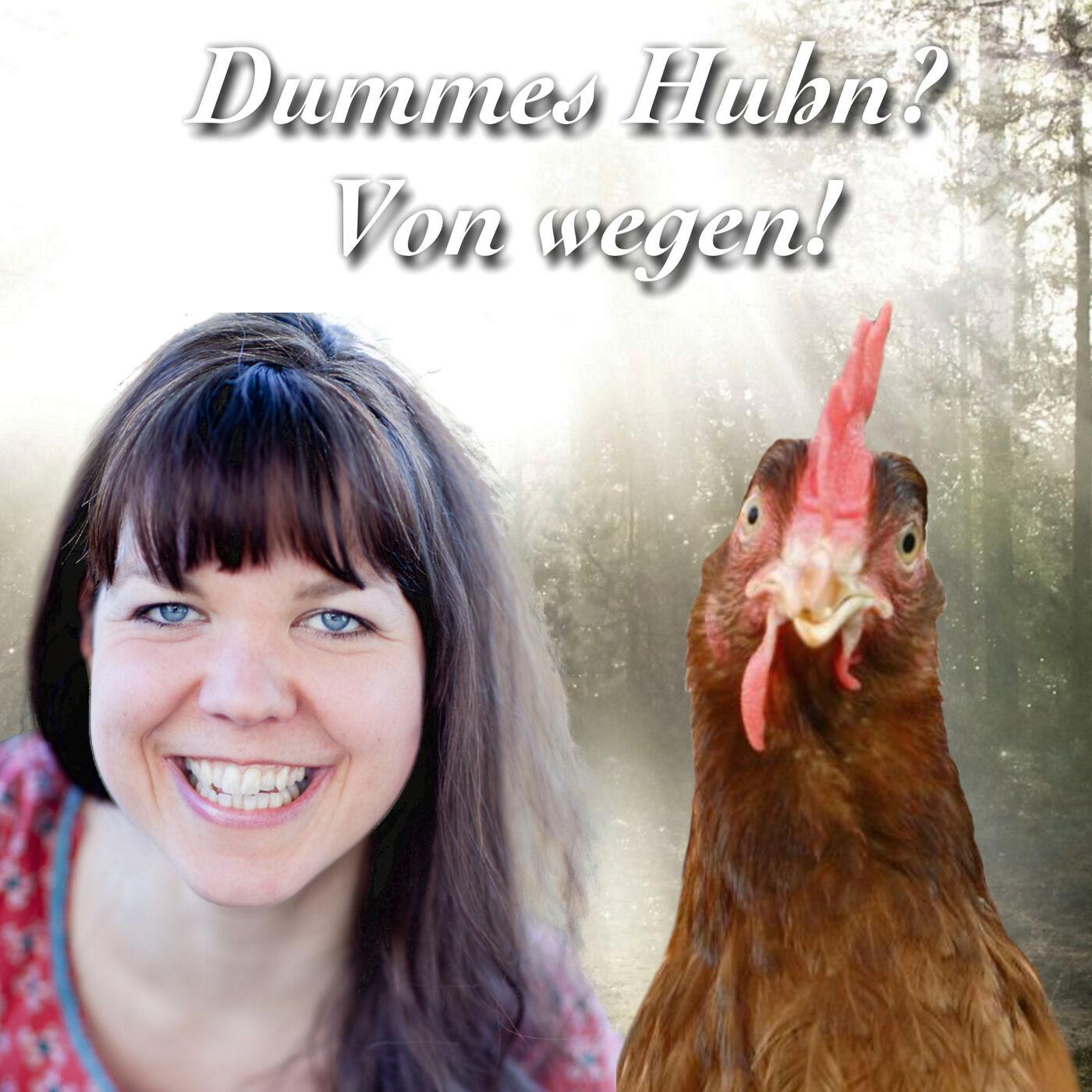 Dummes Huhn? Von wegen!