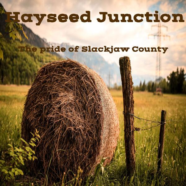 Hayseed Junction Podcast Artwork Image