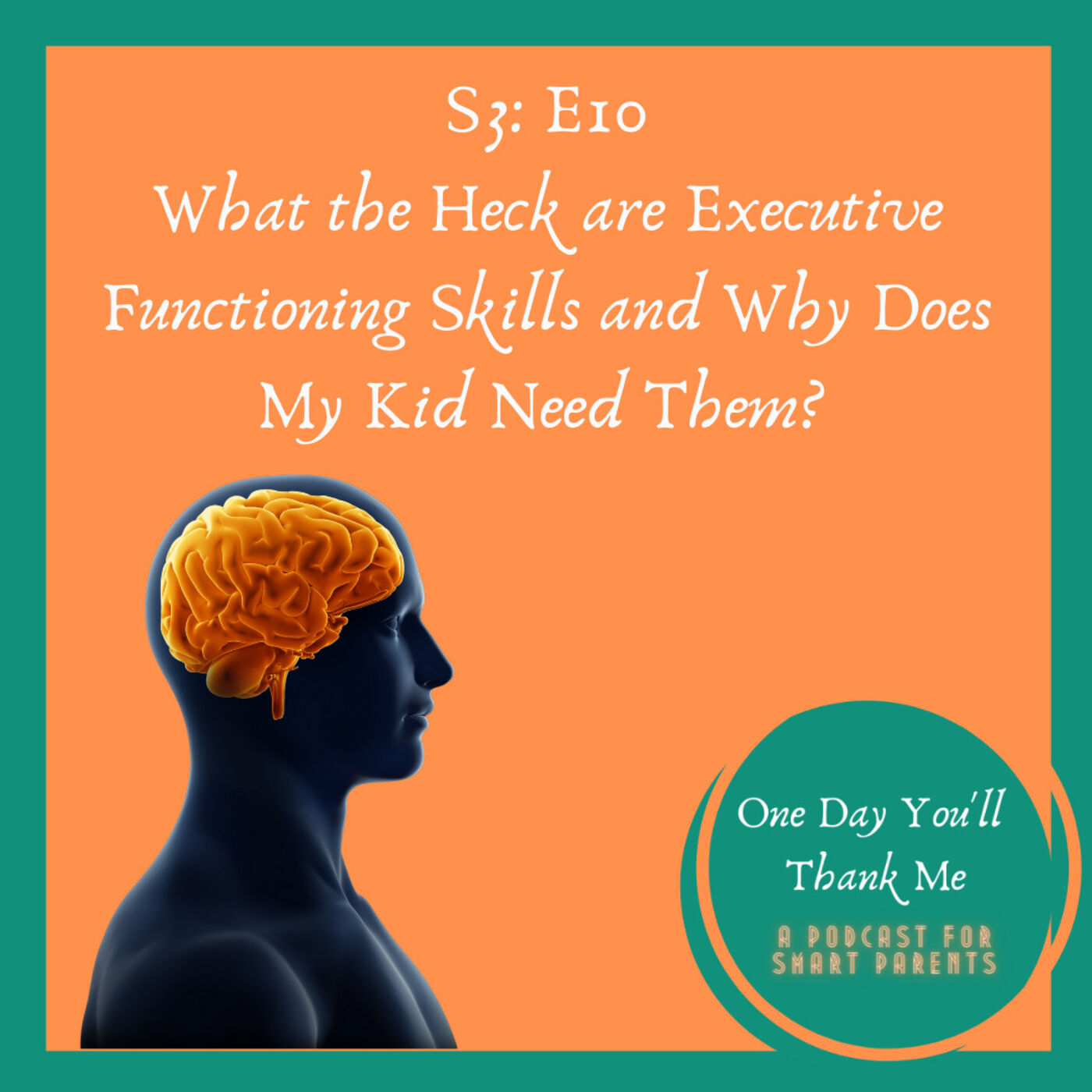 S3: E10 - What Are Executive Functioning Skills and Why Does My Kid Need Them?