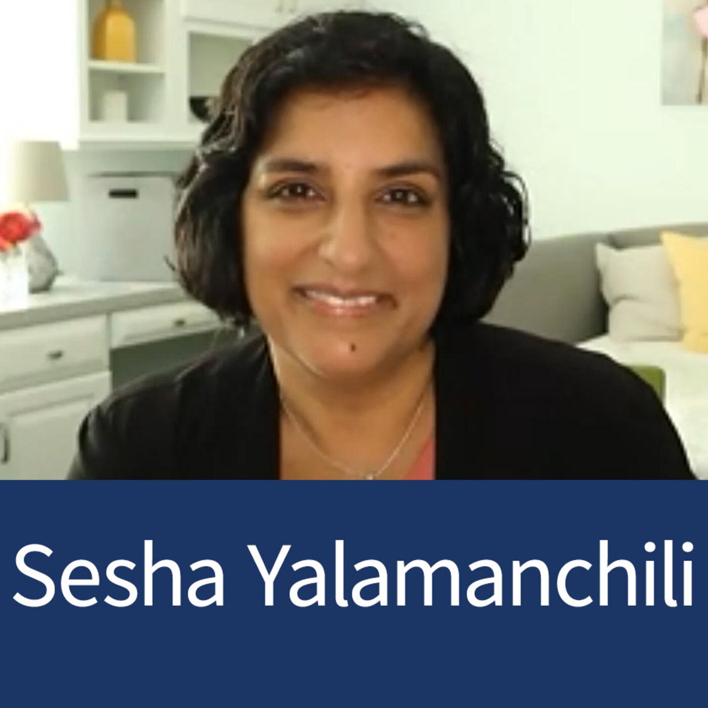 Sesha Yalamanchili - On The Mark Consulting - Imparting Knowledge On The Internet - Episode 19