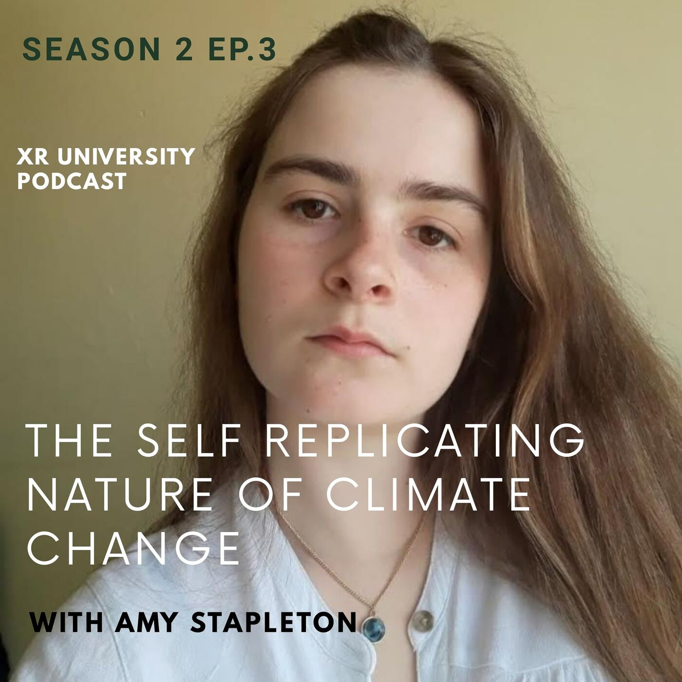 2.3| The Self Replicating Nature of Climate Change, Discussion with Amy Stapleton