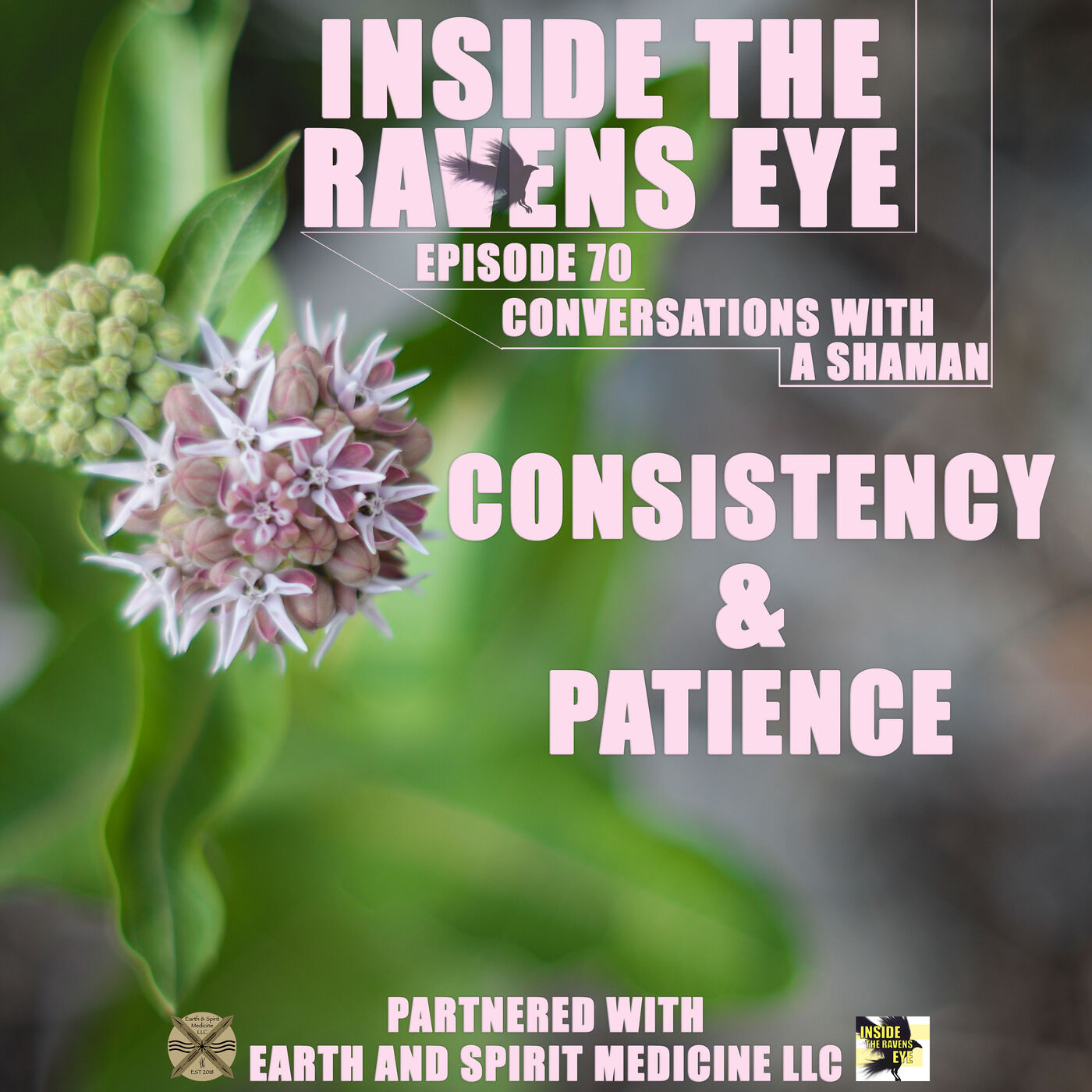 Consistency and Patience - Episode 70 - Conversations with a Shaman