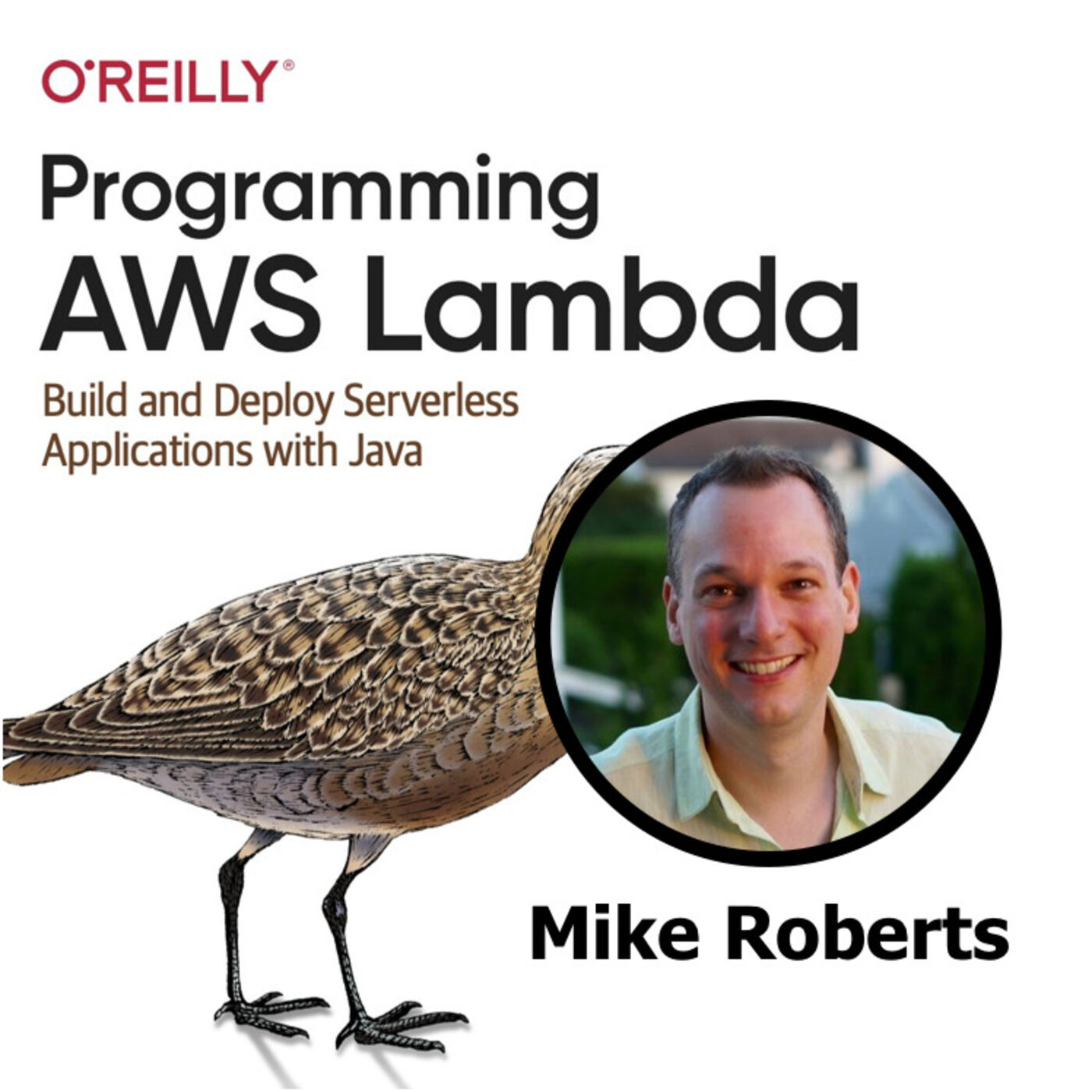 #38: Serverless in the Enterprise with Mike Roberts
