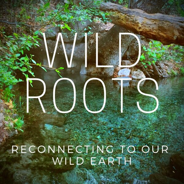 WILD ROOTS Podcast Artwork Image