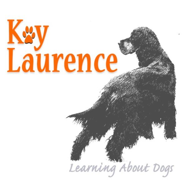 Kay Laurence - Learning About Dogs Podcast Artwork Image