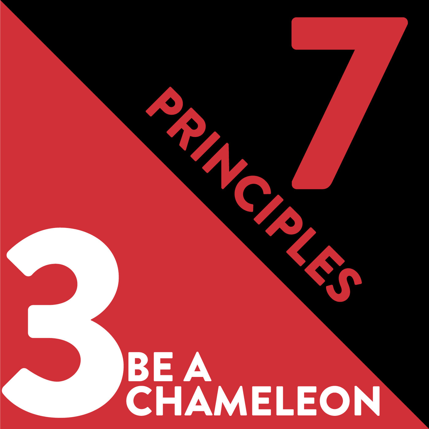 Be a Chameleon: The Third Principle of Relationship Management