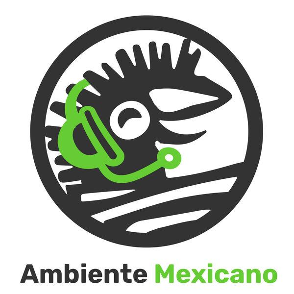 Ambiente Mexicano http://www.regalos-artesanales.com.mx Podcast Artwork Image