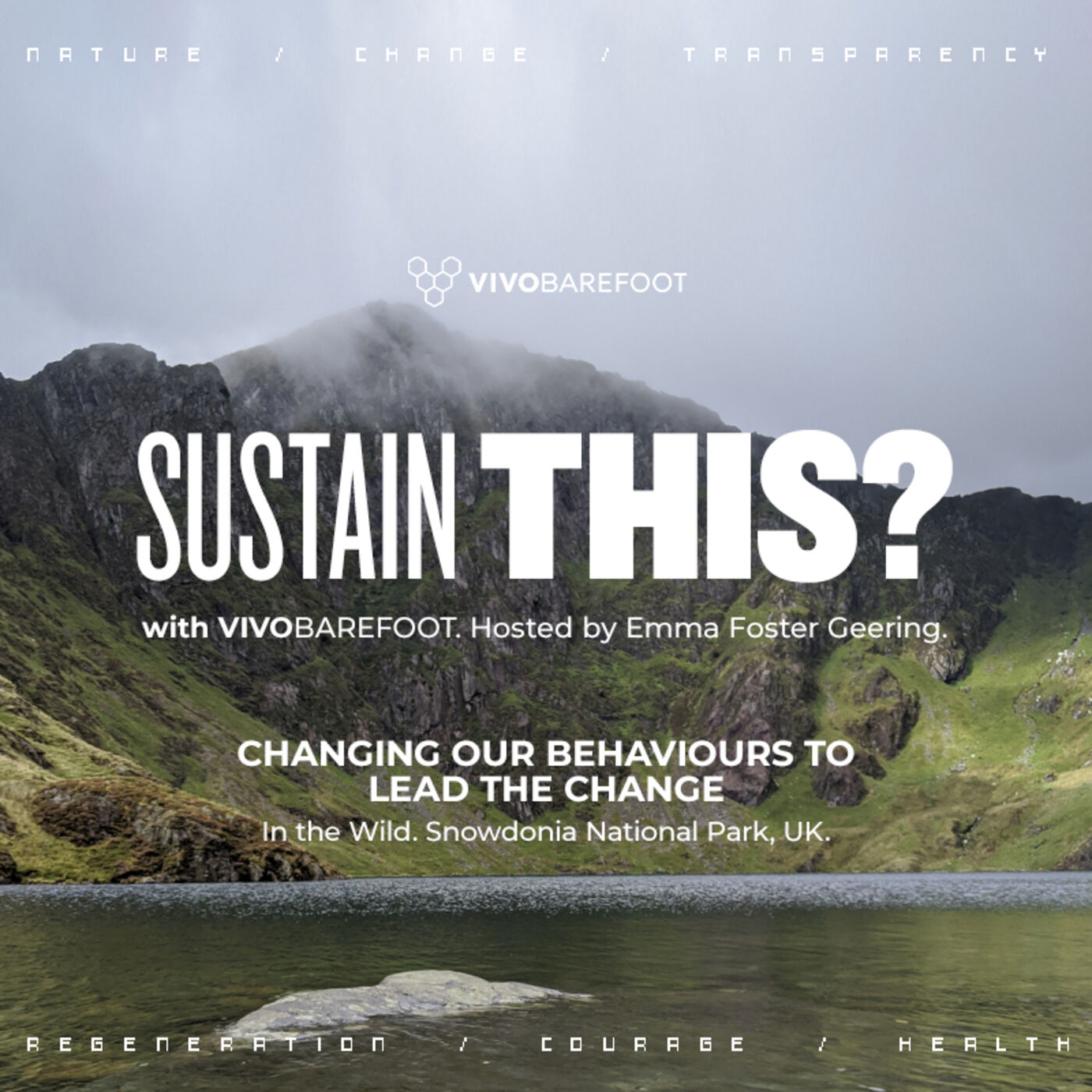 In The Wild: Changing our behaviours to lead the change