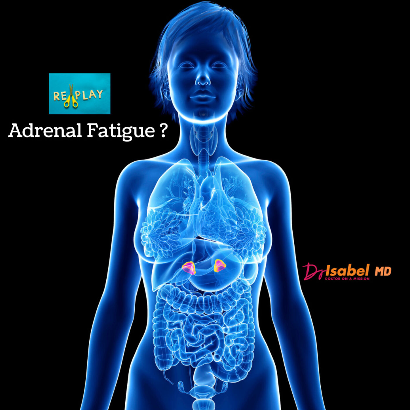 Adrenal Fatigue / Replay of