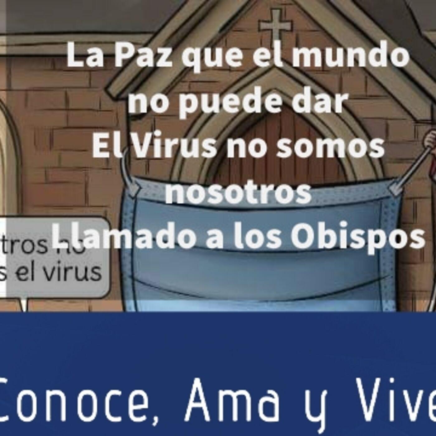 Episodio 246: 😷 Su excelencia: El Virus no somos nosotros ✝️ La Paz que el mundo no nos puede dar 🙏