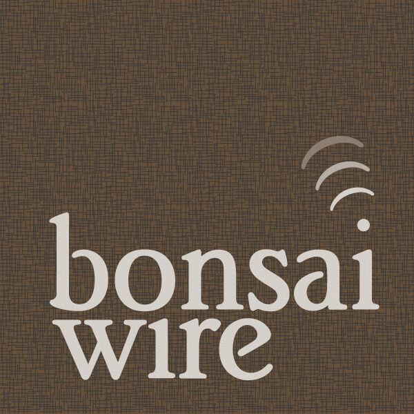 Bonsai Wire Podcast Artwork Image