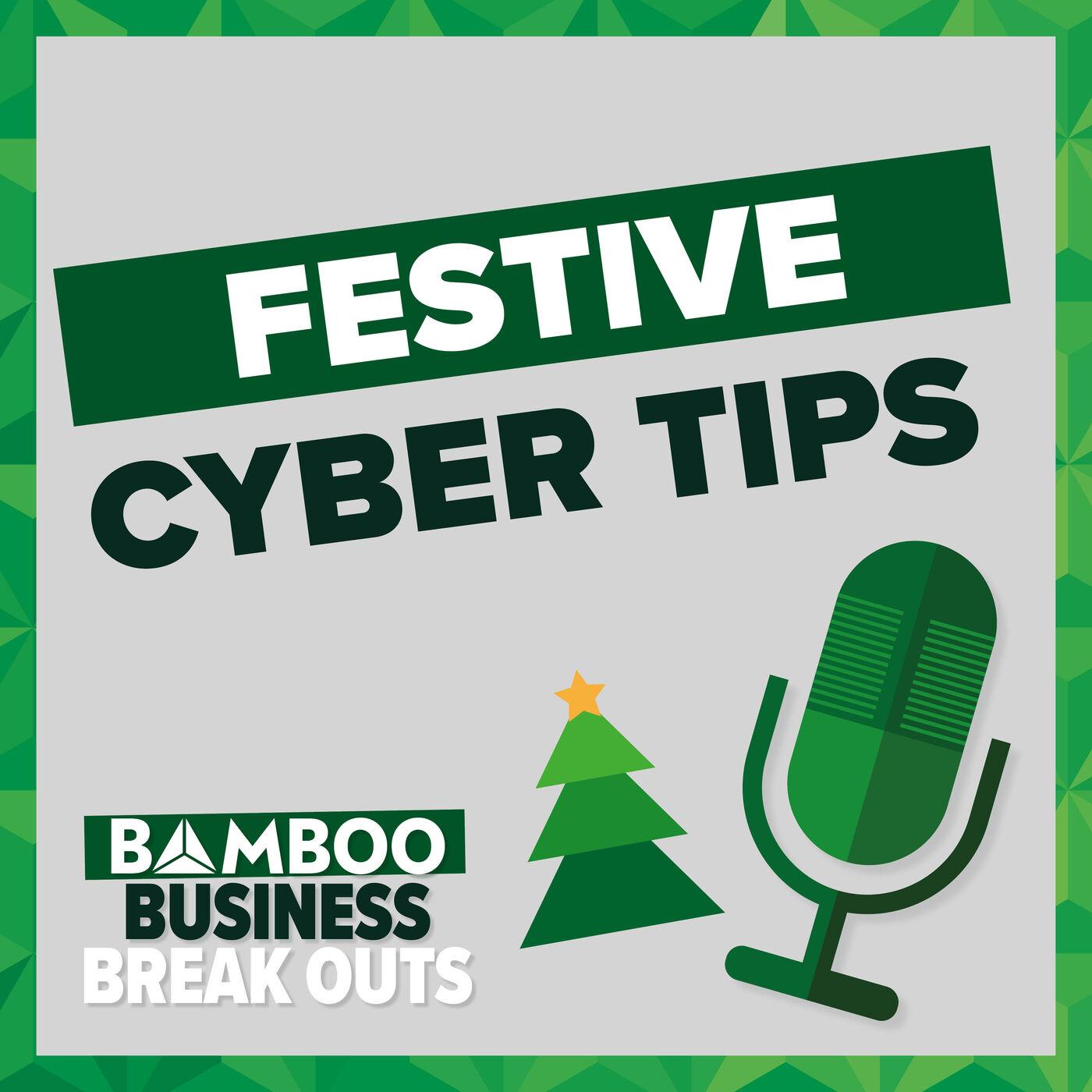 Festive Cyber Tips