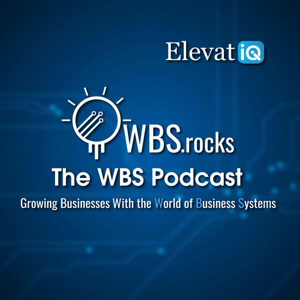 WBSRocks: Business Growth with ERP and Digital Transformation Podcast Artwork Image