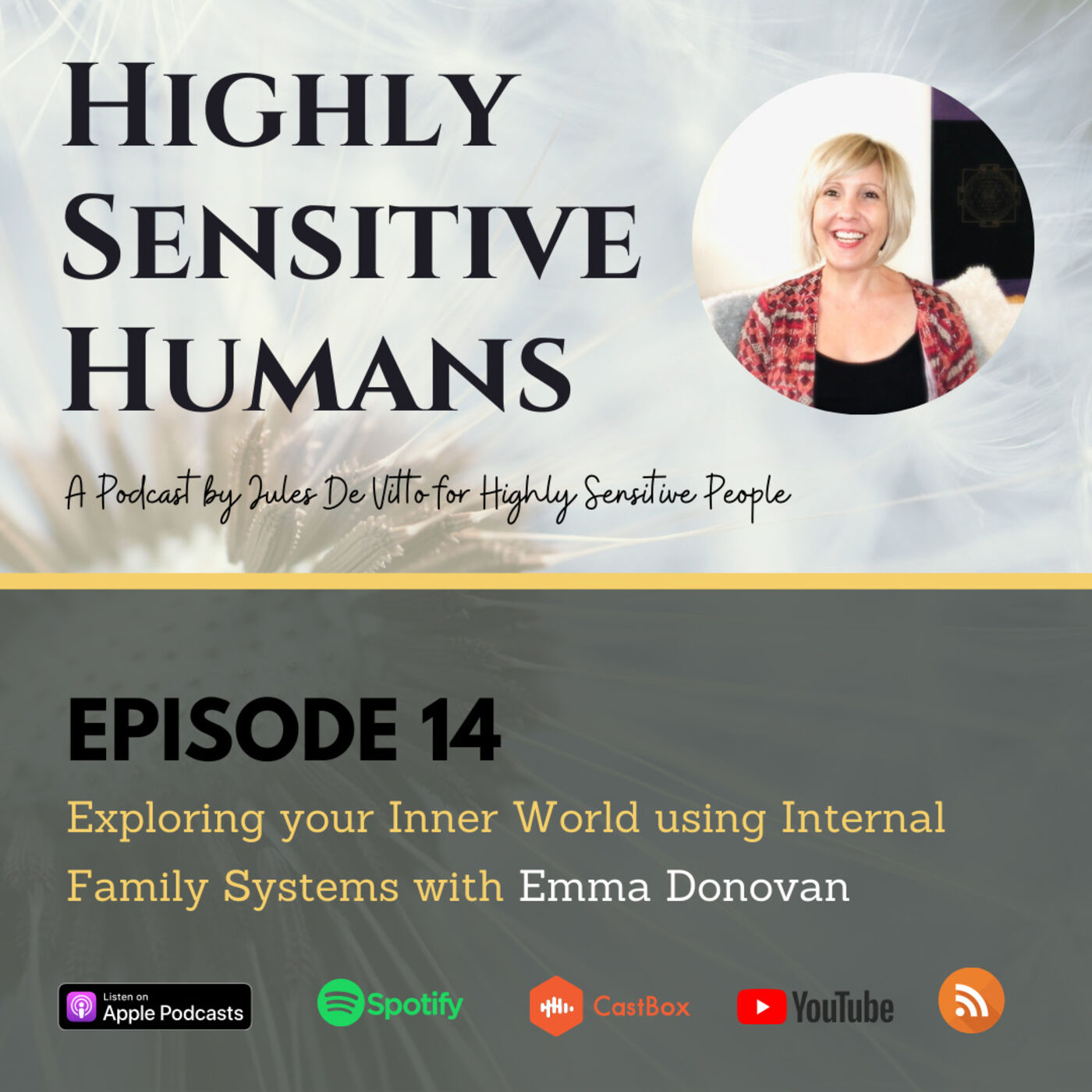 Exploring your Inner World using Internal Family Systems