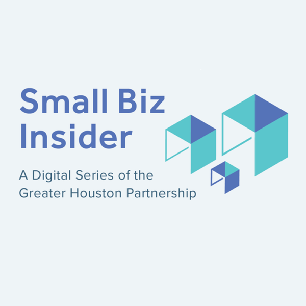 Small Biz Insider Podcast Artwork Image