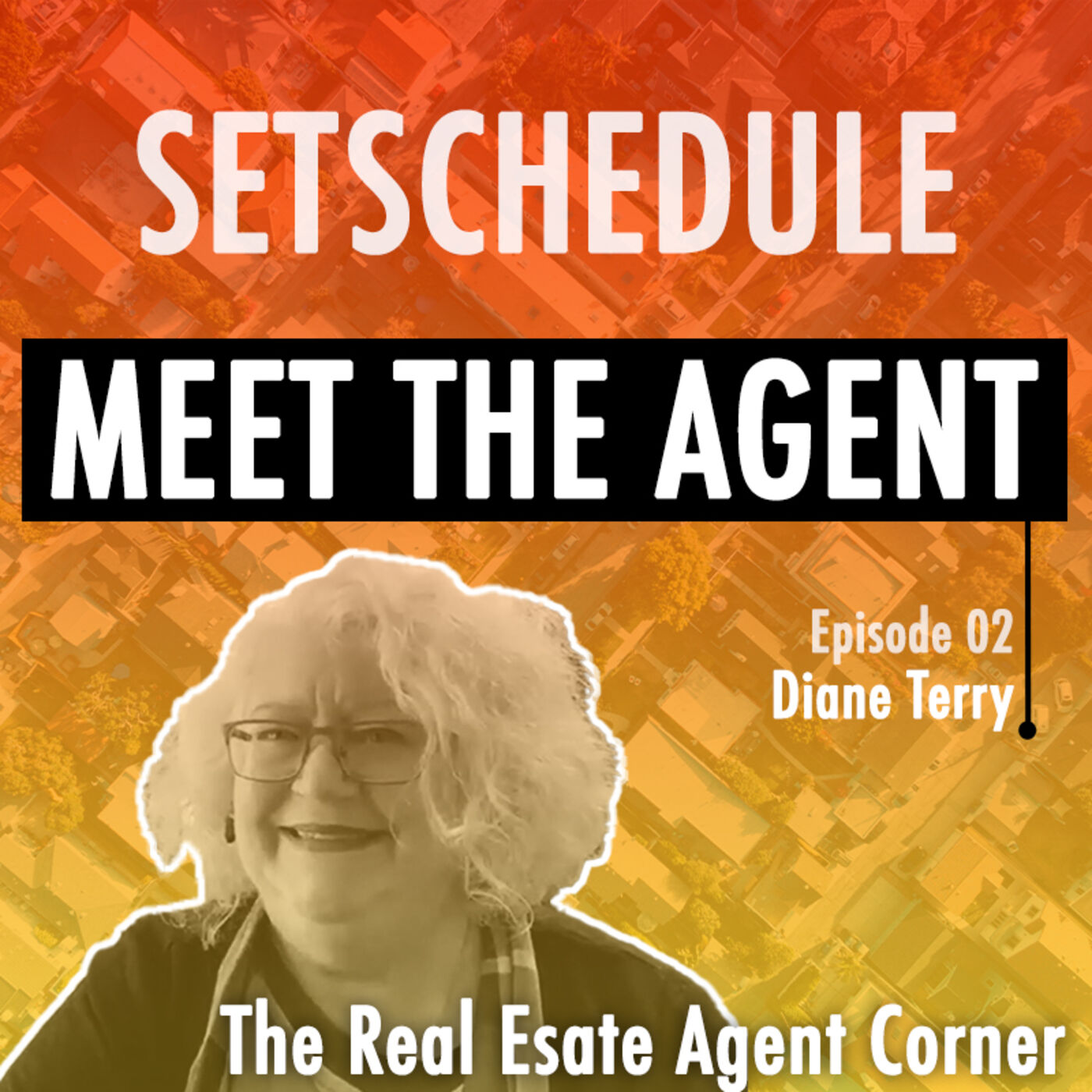 Convert Real Estate Leads to Sales - Diane Terry
