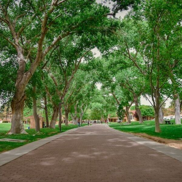Albuquerque Academy: On the Path Podcast Podcast Artwork Image