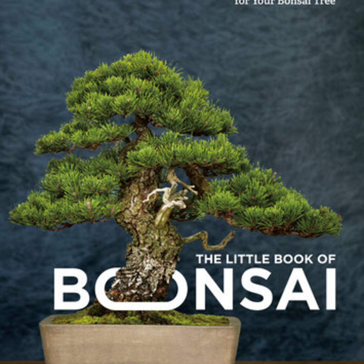 Stories Behind The Little Book of Bonsai