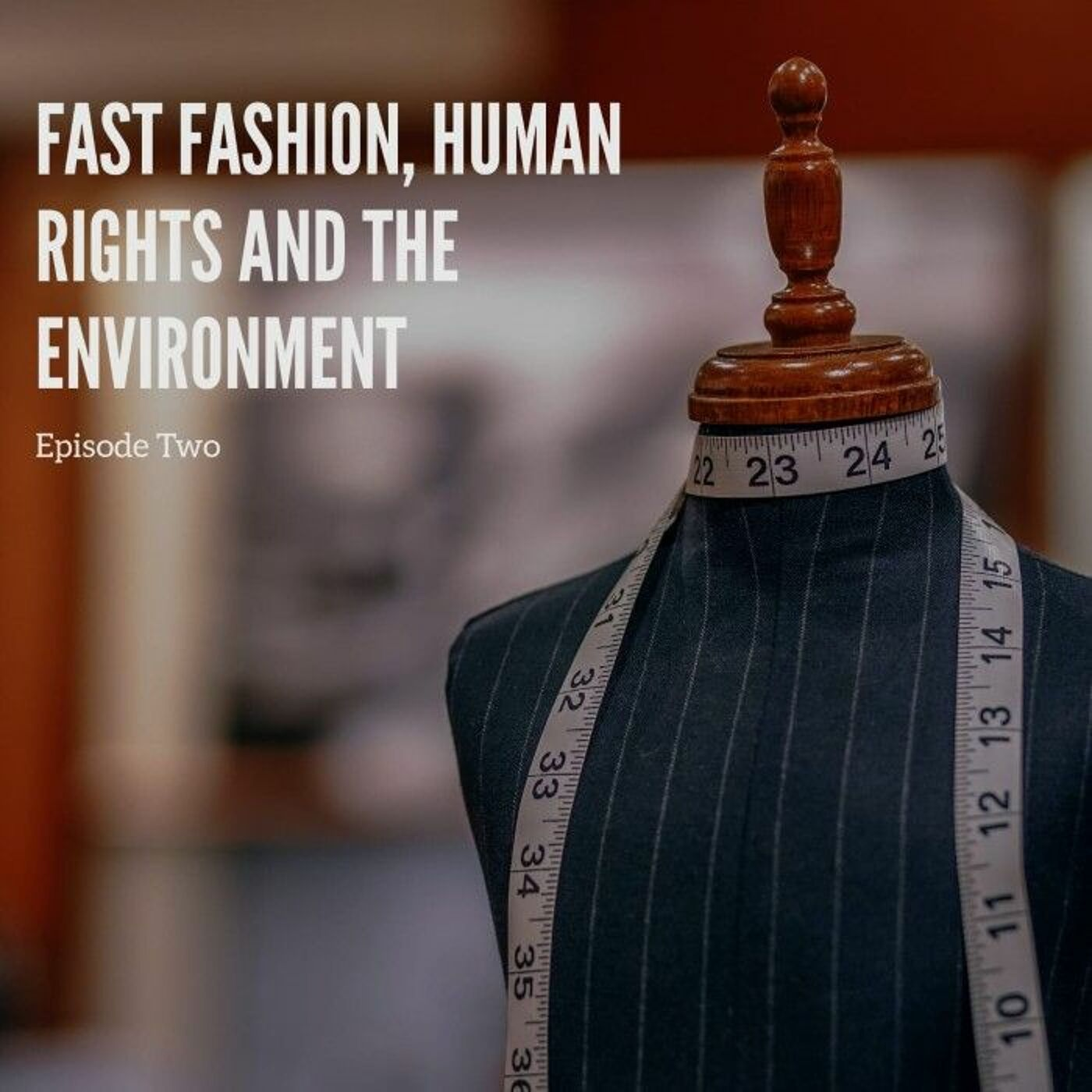 Fast fashion, human rights and the environment