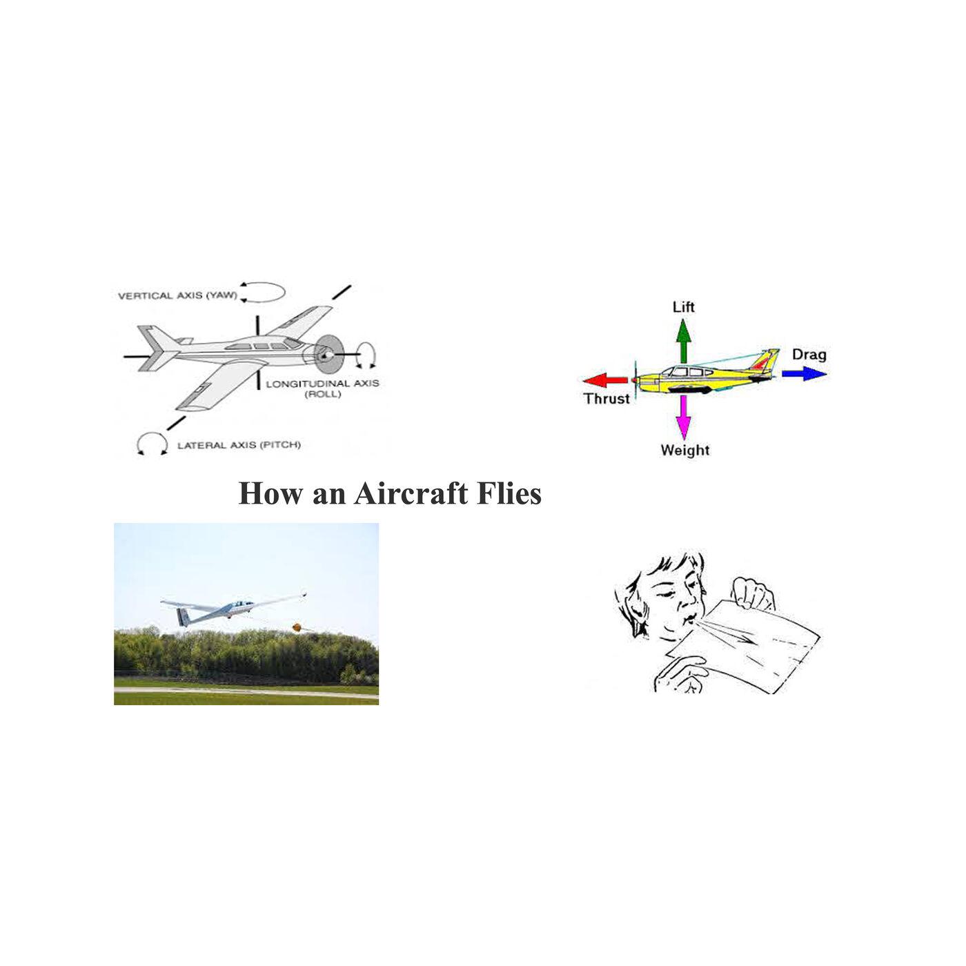 How an Aircraft Flies