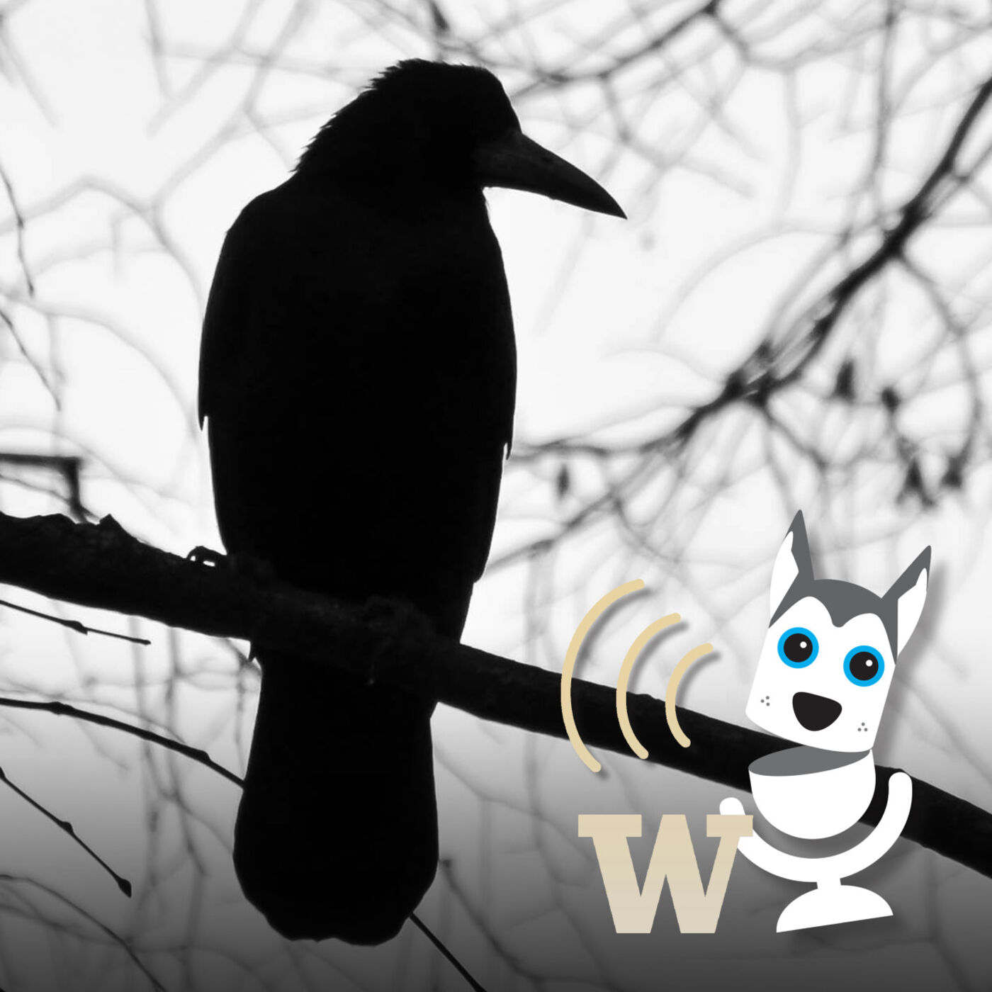 UWT Reads The Raven