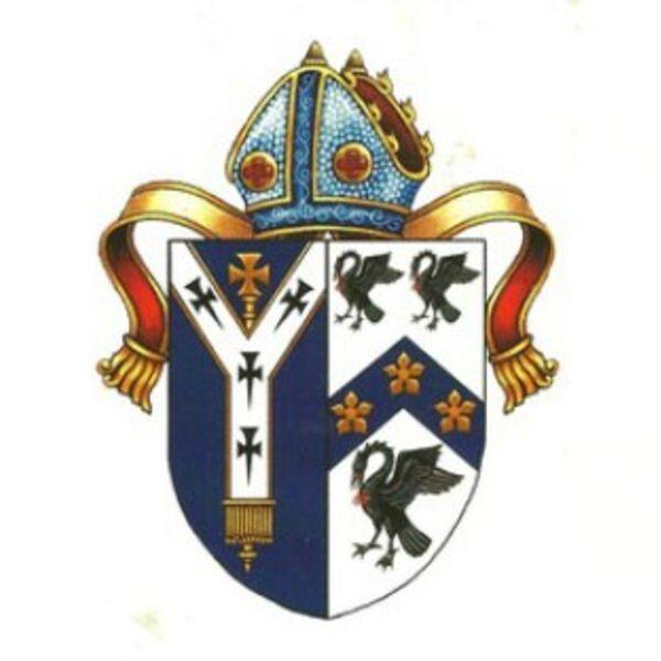 The Cranmer Group Podcast Podcast Artwork Image