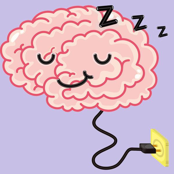 Sleep Science Podcast Podcast Artwork Image