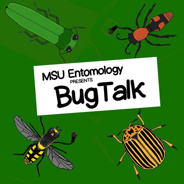 Bug Talk Podcast Artwork Image