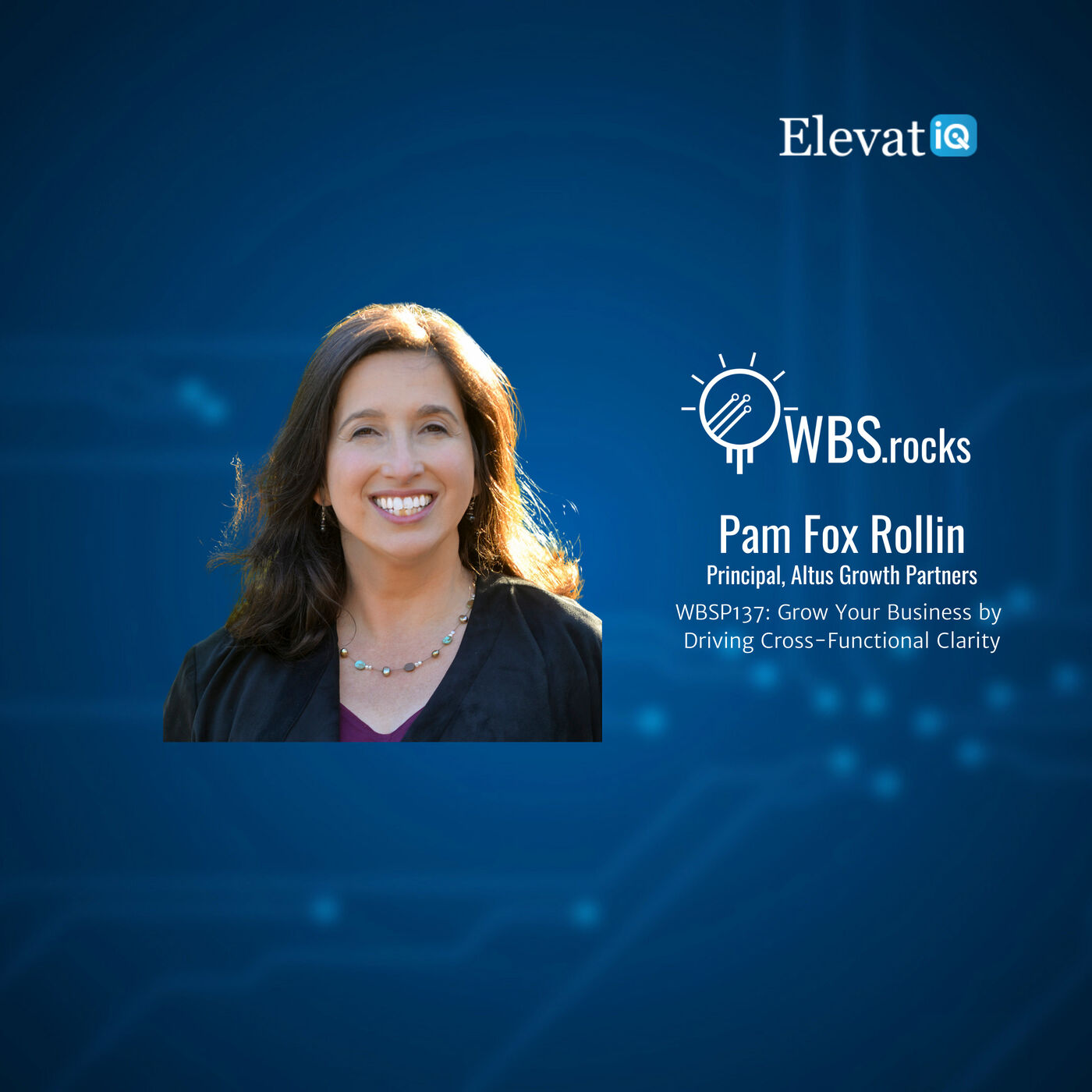 WBSP137: Grow Your Business by Driving Cross-Functional Clarity w/ Pam Fox Rollin